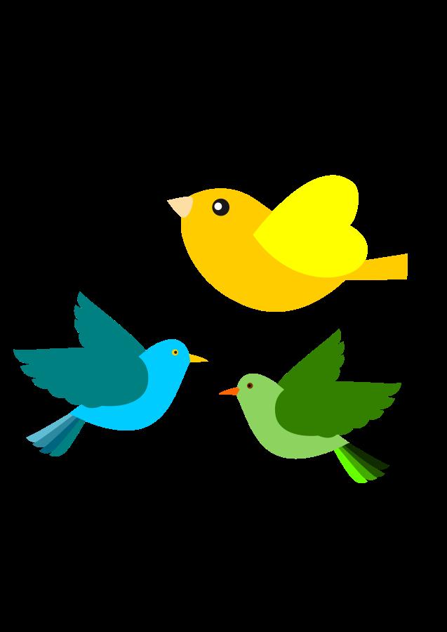 Passarinhos Birds Clipart .