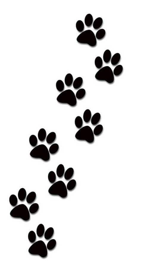 Paw print tattoo for the top of my foot.