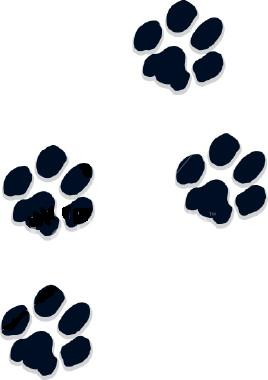 Paw Prints Clipart Free Clip Art Picture-Paw Prints Clipart Free Clip Art Pictures Of Dogs And Dog Web Graphics-15