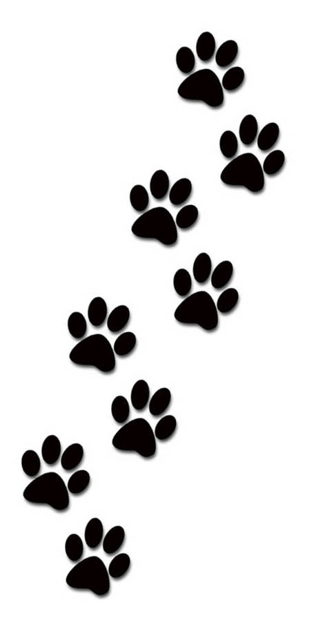 Paw prints paws tattoo designs for women kids and everybody paw print clip art