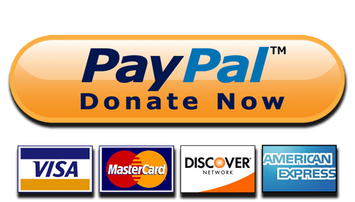 Donate Now Paypal And Cards Button-Donate Now Paypal and Cards Button-3
