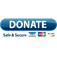 Download Paypal Donate Button Free PNG P-Download Paypal Donate Button Free PNG photo images and clipart | FreePNGImg-5