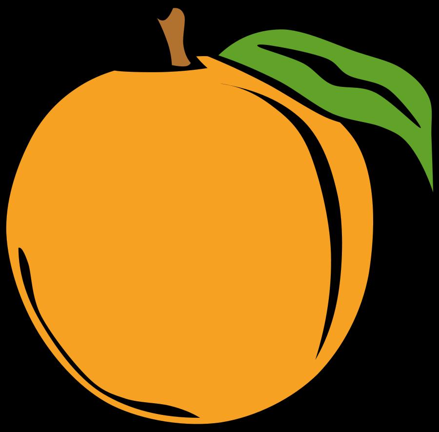 Peach clip art clipart photo 3