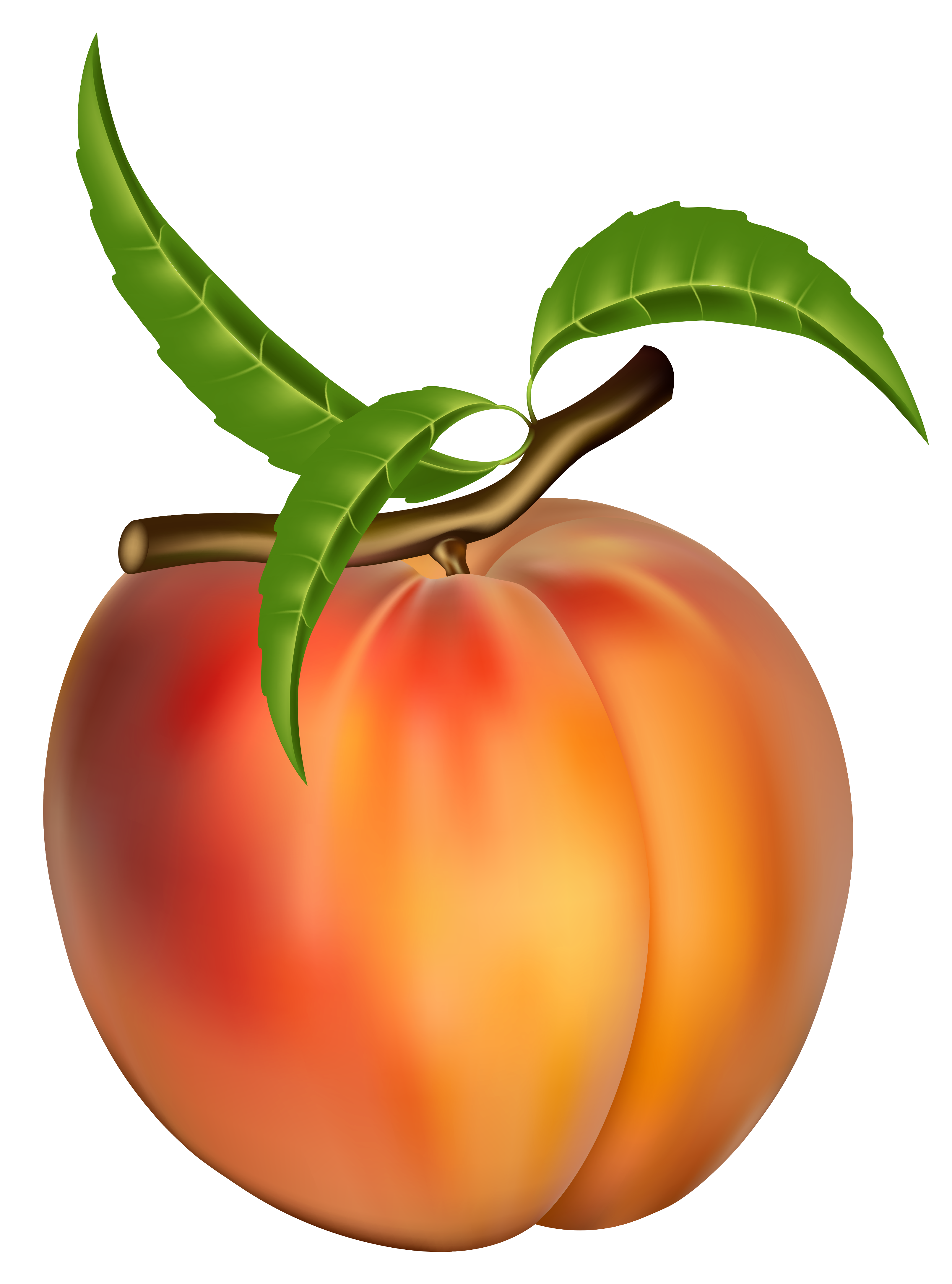 Peach clip art free