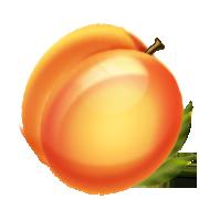 Peach Clipart Peach Png