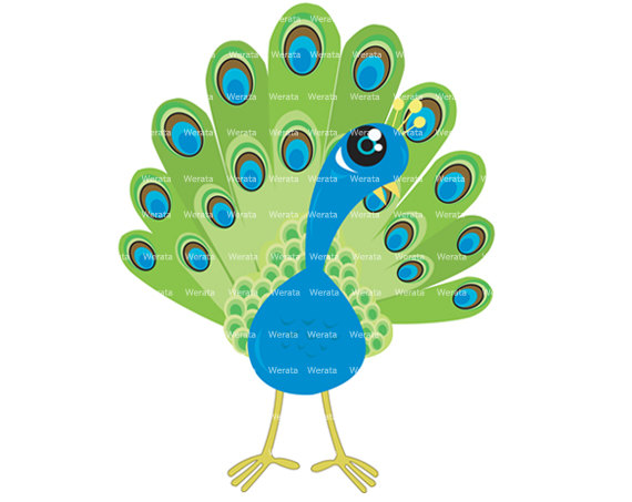 Peacock Clip Art Digital Clipart - Peaco-peacock clip art digital clipart - Peacock Digital Clip Art - blue/green Peacock clip art - Personal and Commercial Use-7