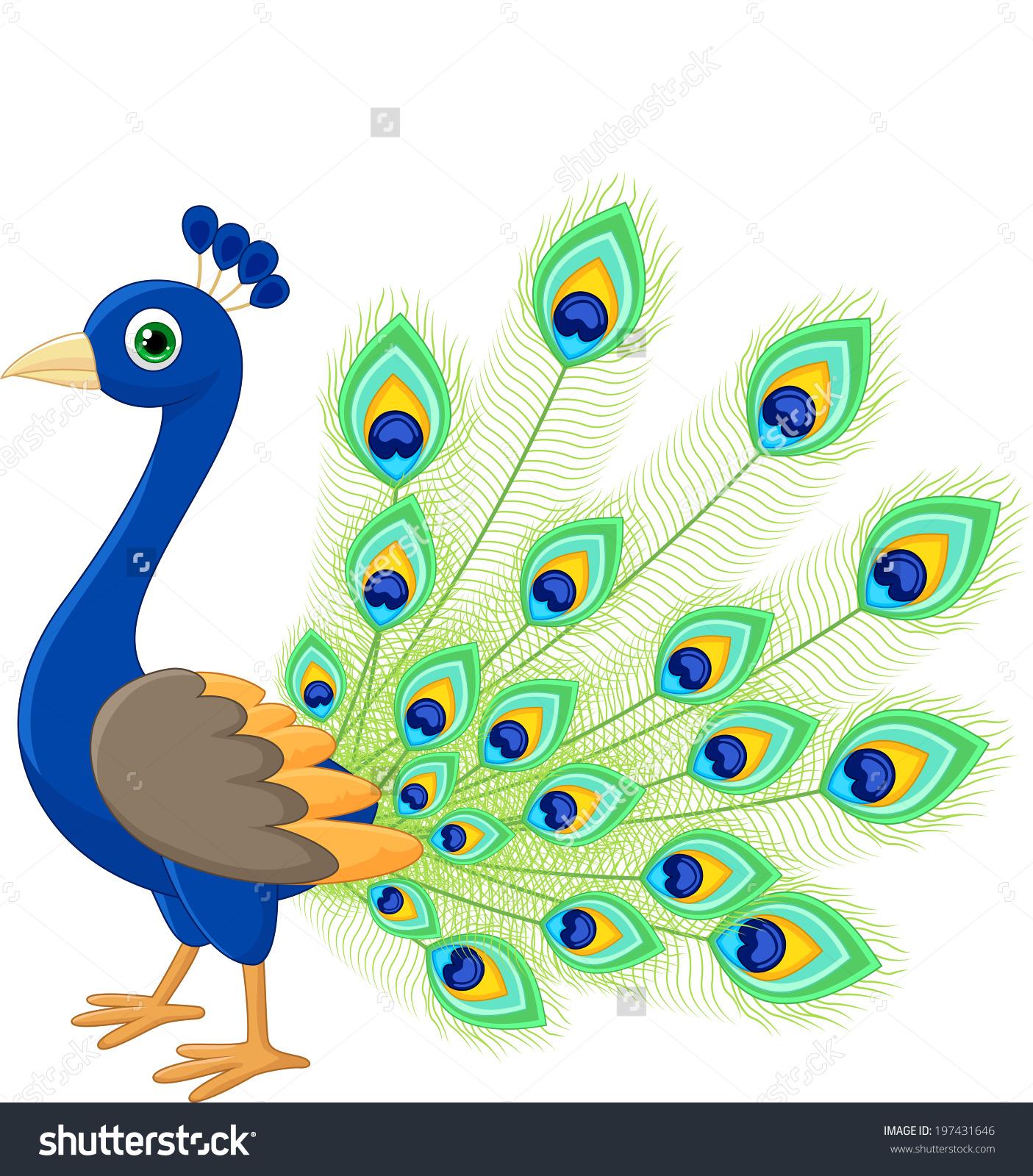 Peacock Clip Art-Peacock Clip Art-6