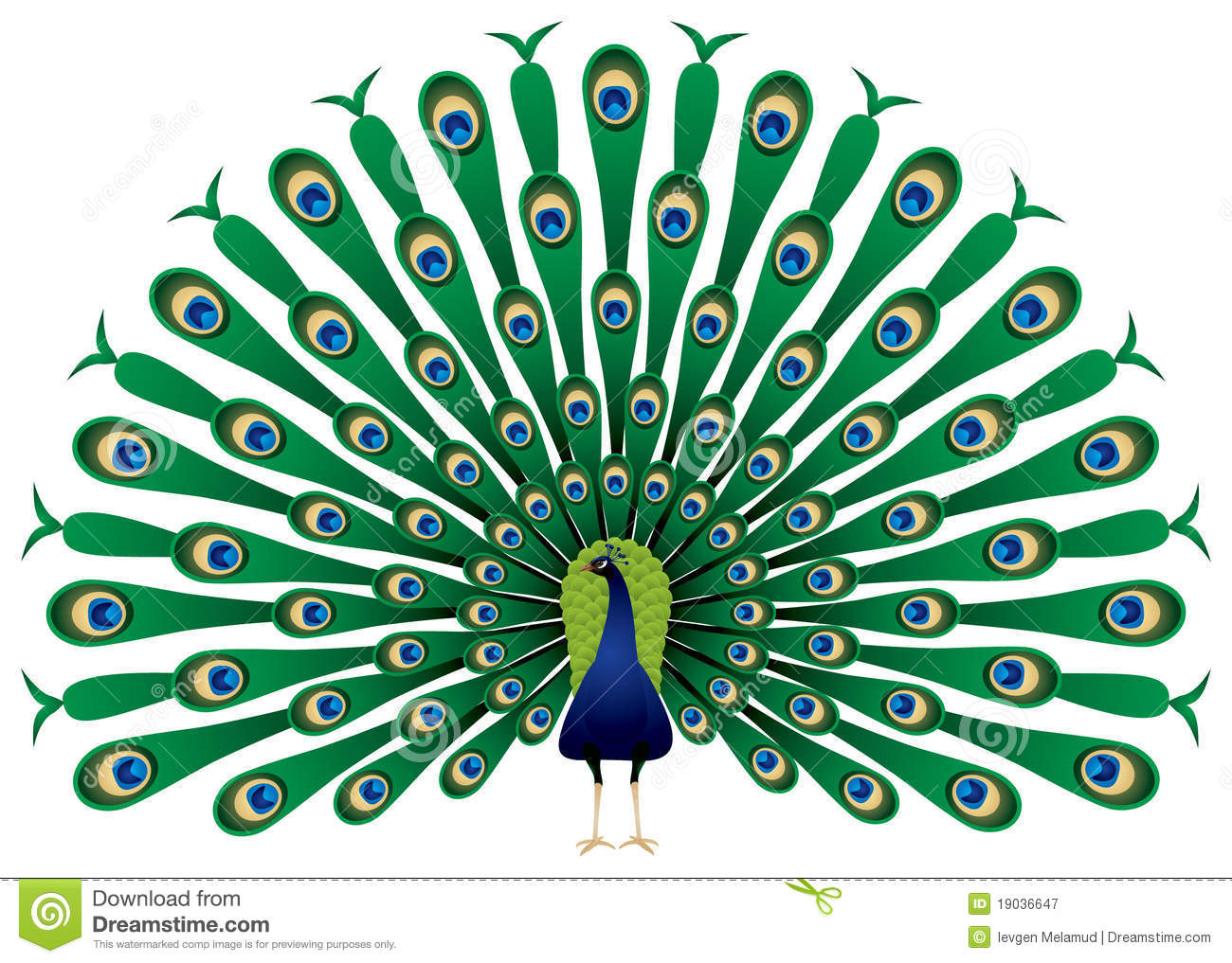 Peacock Clipart; Peacock .-Peacock Clipart; Peacock .-7
