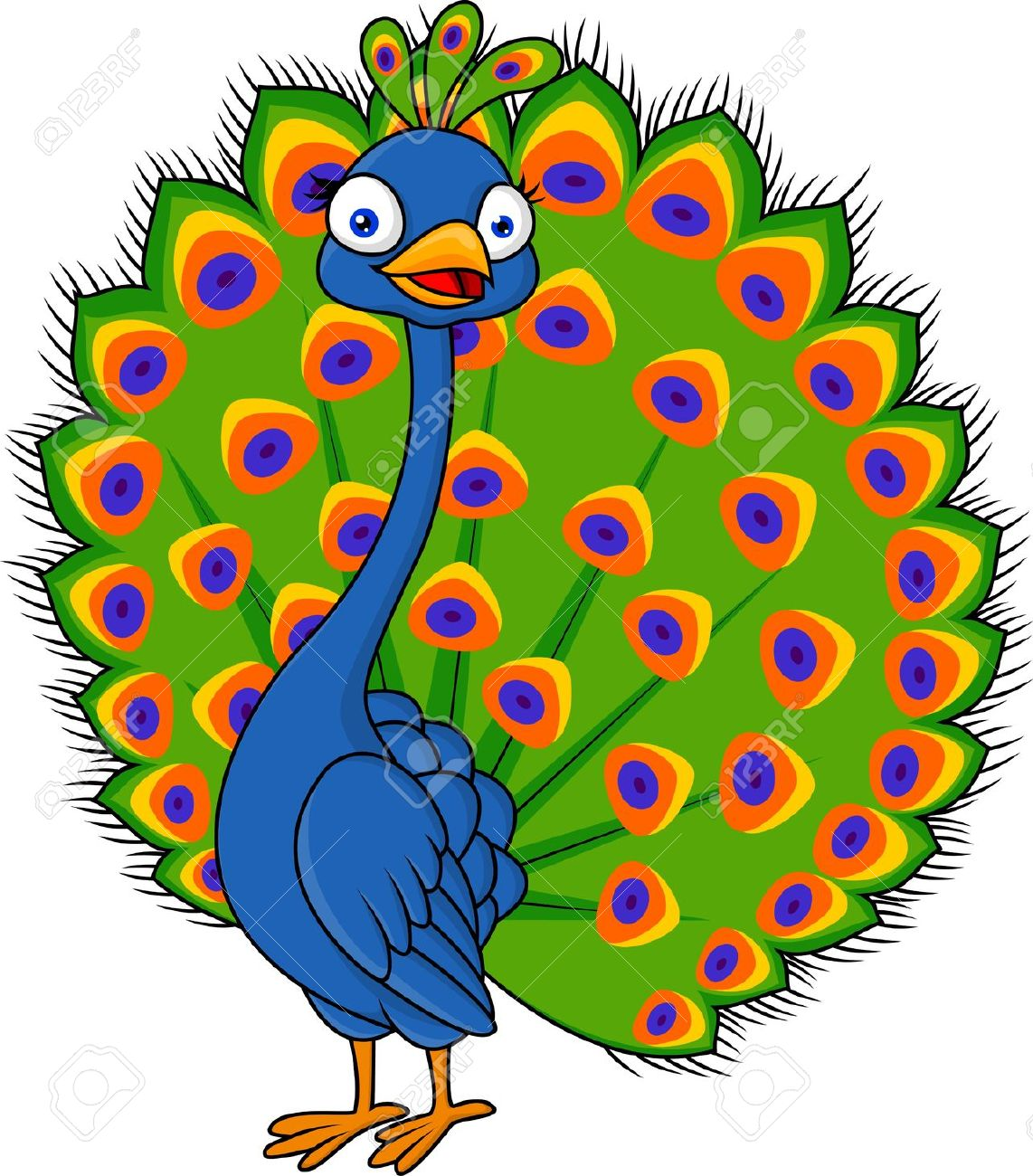 peacock: Cute peacock cartoon Illustration