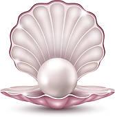 Pearl Shell; String Pearls ...-pearl shell; string pearls ...-10