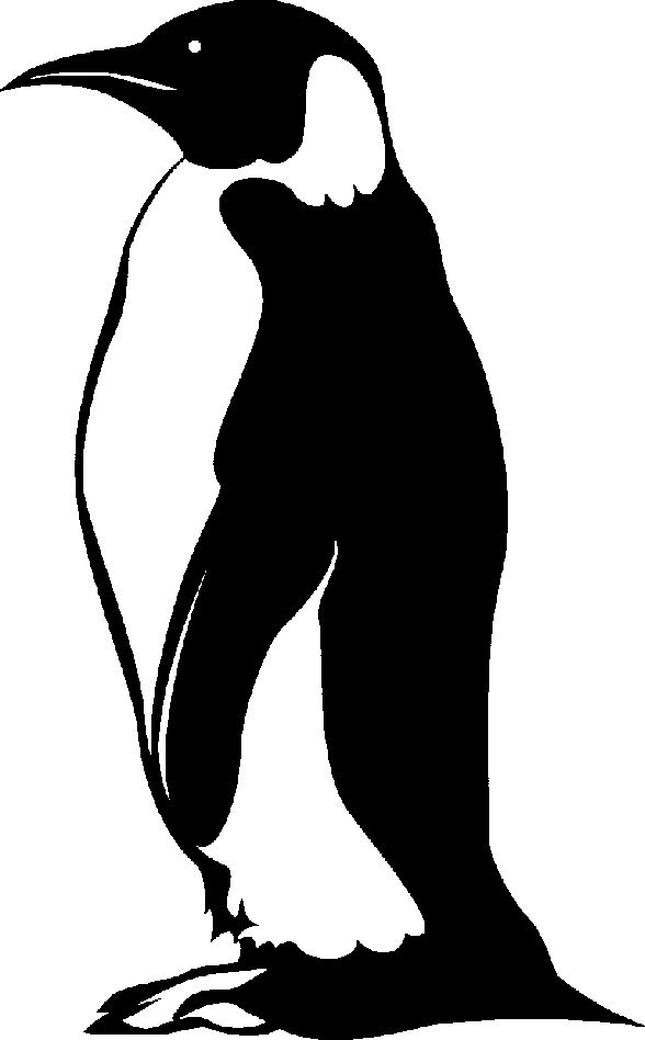 Penguin clip art google search 2 project 1