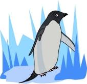 Penguin Clipart Size: 43 Kb