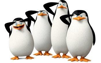 Cartoon Movie Penguins Of Madagascar · -Cartoon Movie Penguins Of Madagascar · HD Wallpaper | Background Image  ID:682225-1