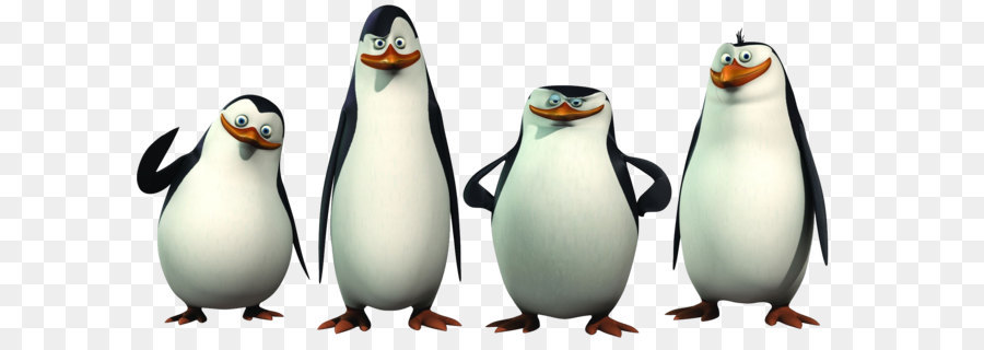 Penguin Madagascar Animation Clip art - Madagascar penguins PNG
