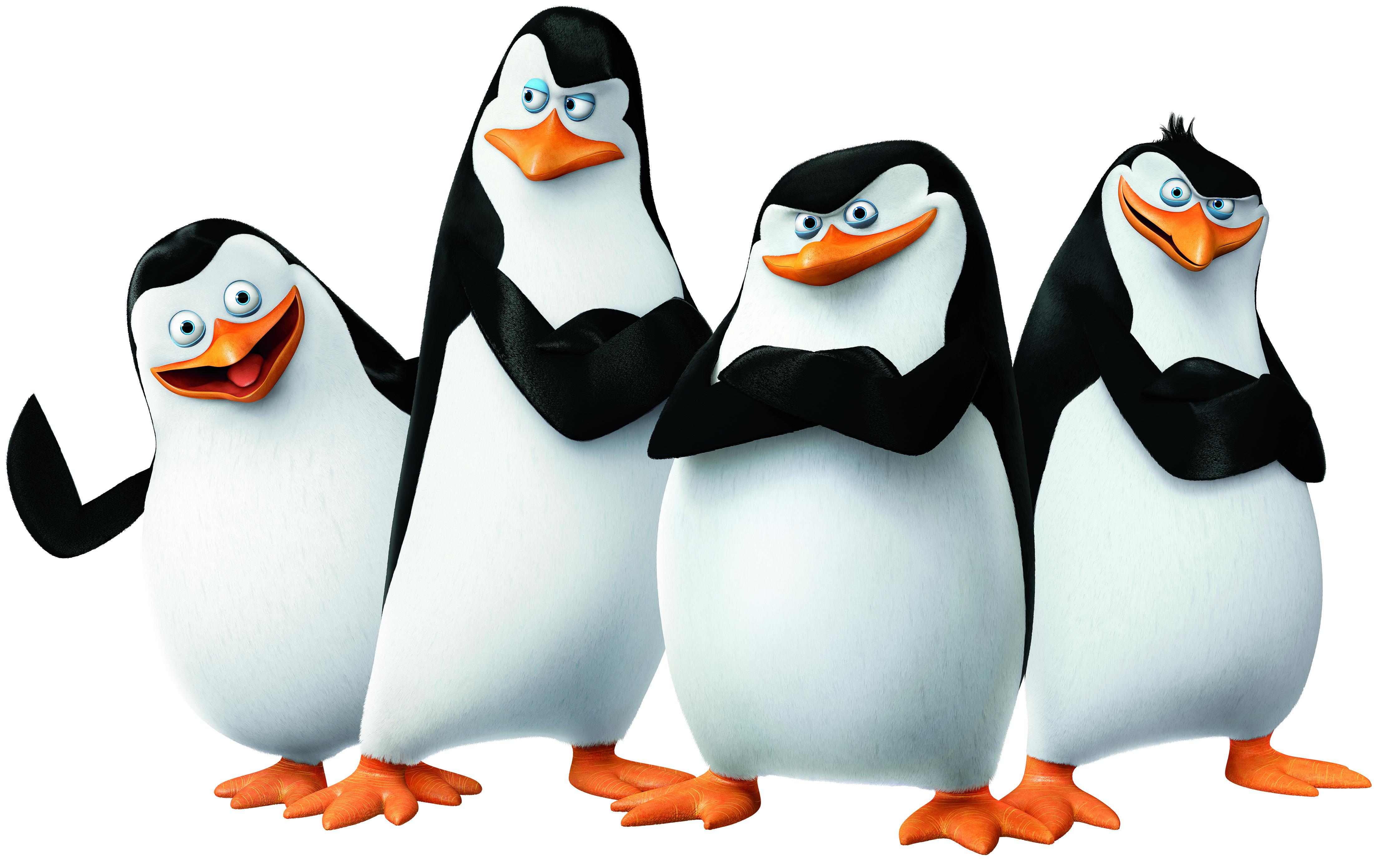 Pinguins De Madagascar - Pesquisa Google-pinguins de madagascar - Pesquisa Google-14