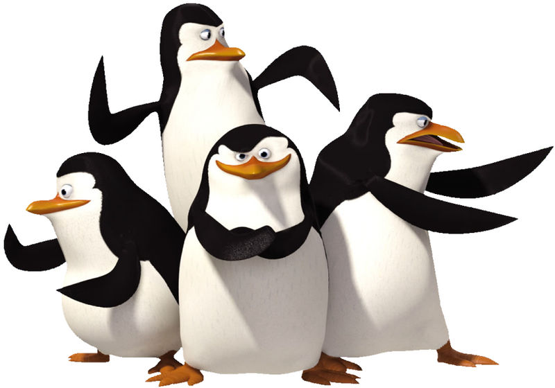 The penguins (left to right): Private, Kowalski, Skipper and Rico.