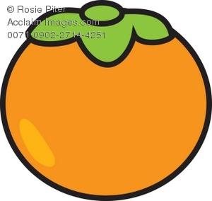Persimmon Clipart-Clipartlook - Persimmon Clipart