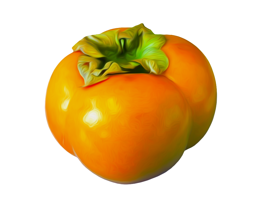 Best free Persimmon Icon PNG - Persimmon Clipart