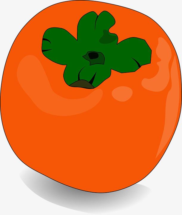 fresh persimmon, Good To Eat, Fruit, Per-fresh persimmon, Good To Eat, Fruit, Persimmon PNG Image and Clipart-3
