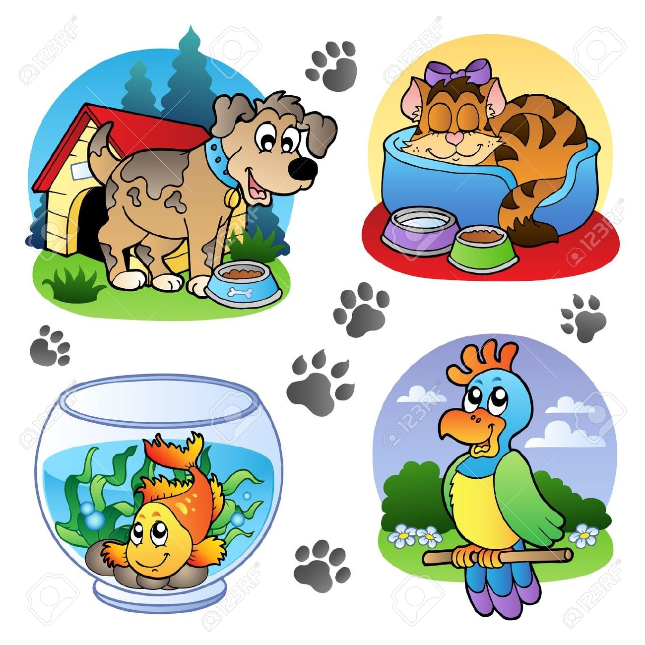 pet bowl: Various pets images