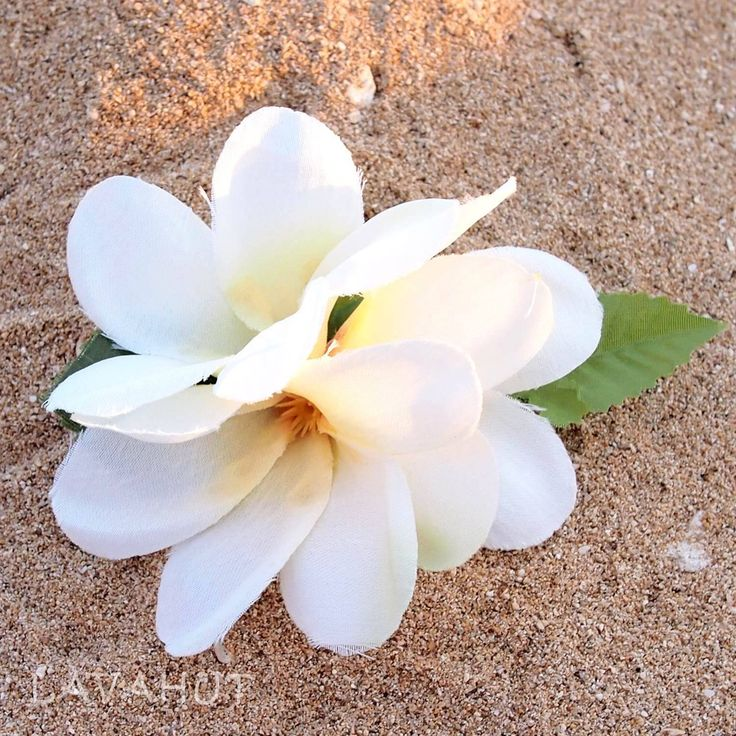 Petite Plumeria White Hawaiian Flower Hair Clip