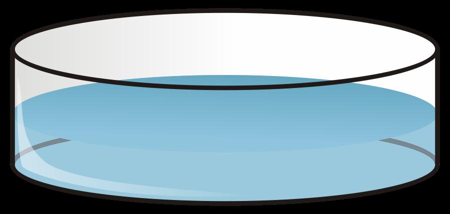 Petri Dish Clipart - Petri Dish Clip Art
