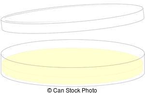... Petri Dish - Petri dish with bottom, top and solid medium.
