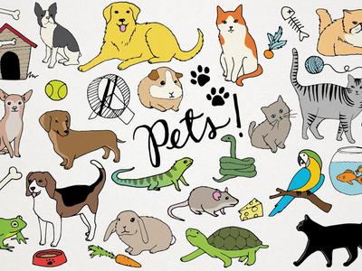 Pets Clipart Illustrations