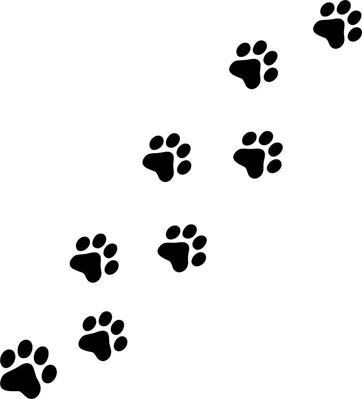 Picture of a panther paw print clipart image #1189