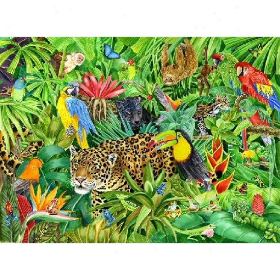 Picture Of Rainforest Janet Skiles Jigsaw Puzzle 300pc Images