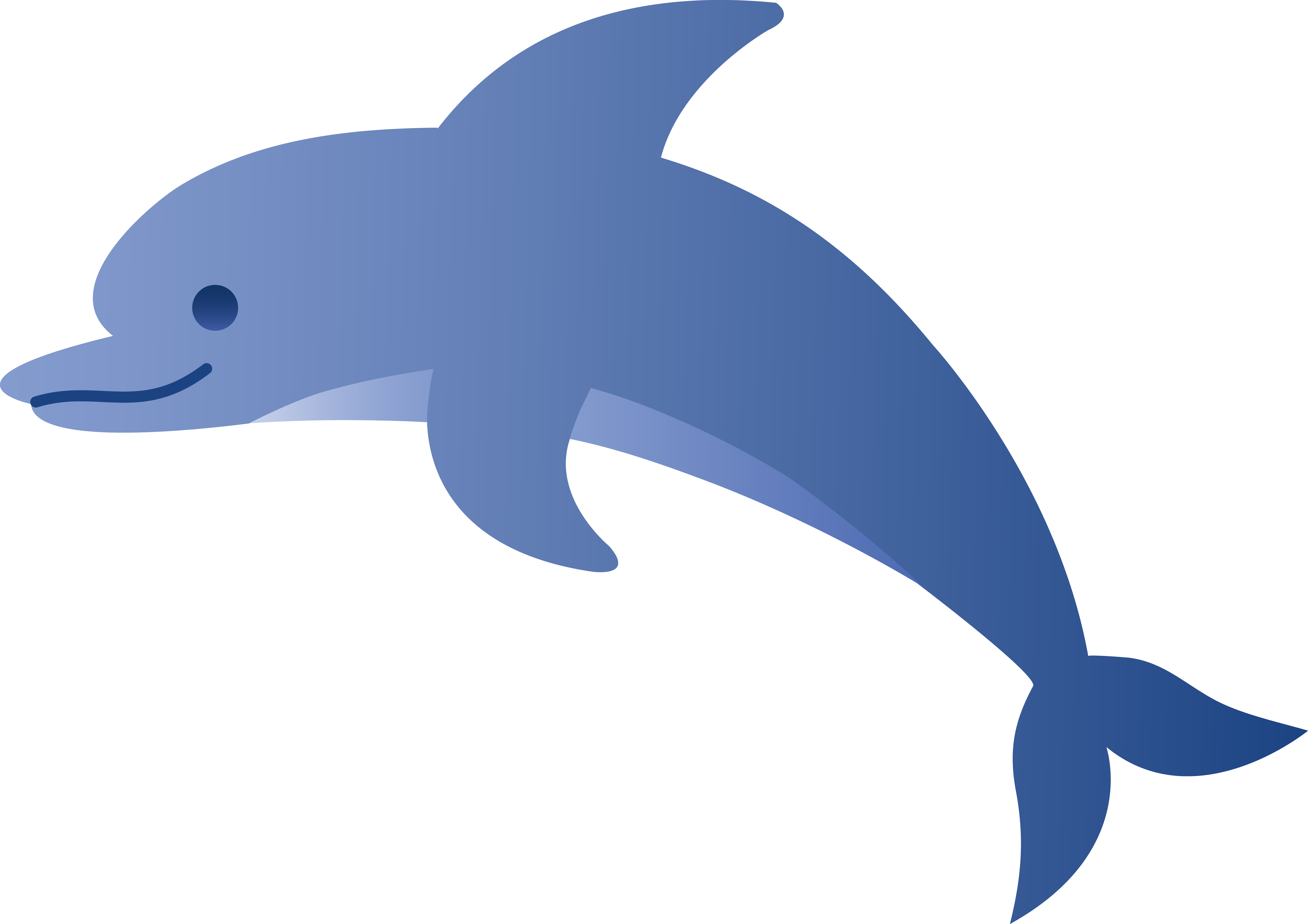 Pictures Of Cartoon Dolphins .-Pictures Of Cartoon Dolphins .-19