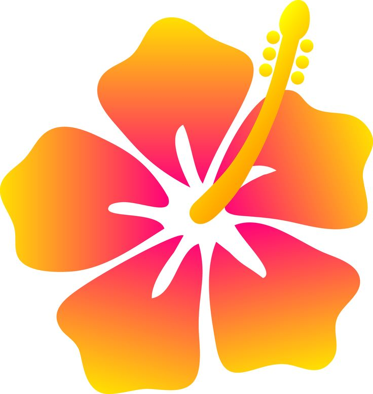 pictures of hawaiian flowers clip art | Jungle clip art | Clipart library