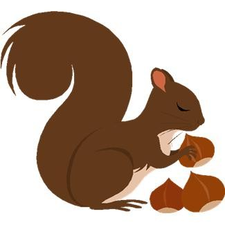 Pictures Of Squirrels With Nuts