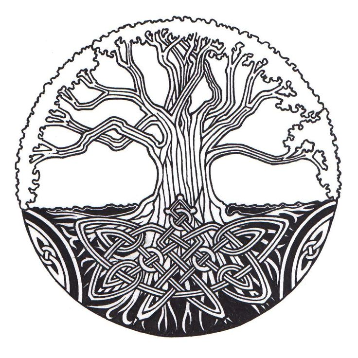 Pin By Julie On Irish Clipart | Clipart -Pin by Julie on Irish clipart | Clipart library. 21 tree of life ...-10
