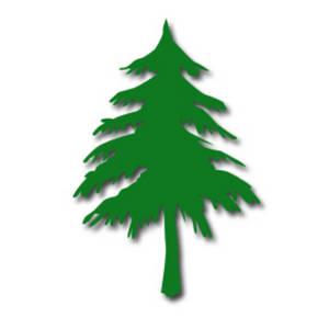 Pine Tree Clipart-pine tree clipart-7