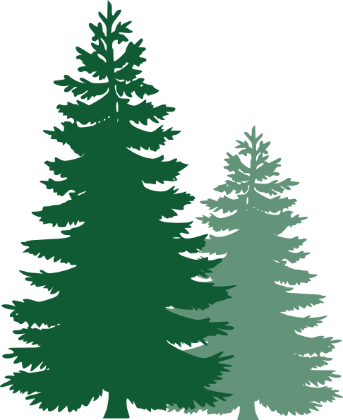 Pine Tree Clipart-pine tree clipart-8