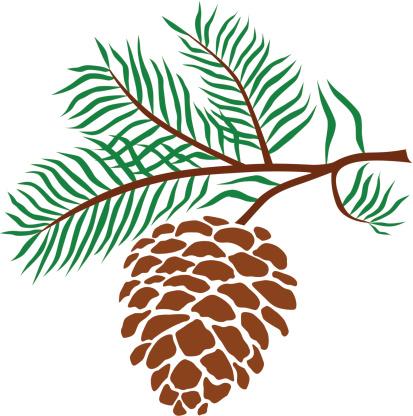 ... Pine Cone Clip Art, Vector Images u0026 Illustrations ...