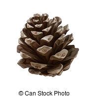Pine cone Clipartby Artnature0/17; Pine cone