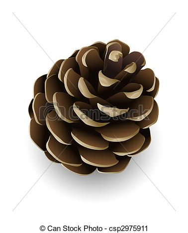 ... pine cone isolated - sing - Pine Cone Clipart