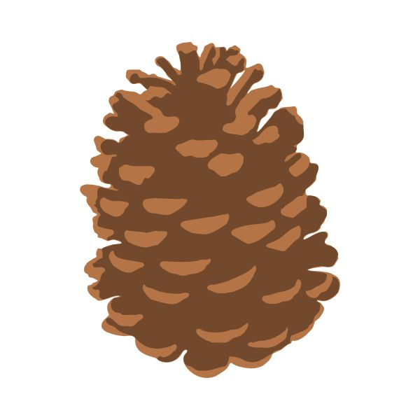 Pine Cone Svg Cutting Files .-Pine Cone Svg Cutting Files .-4