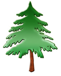 Pine tree clipart free clipart images 6