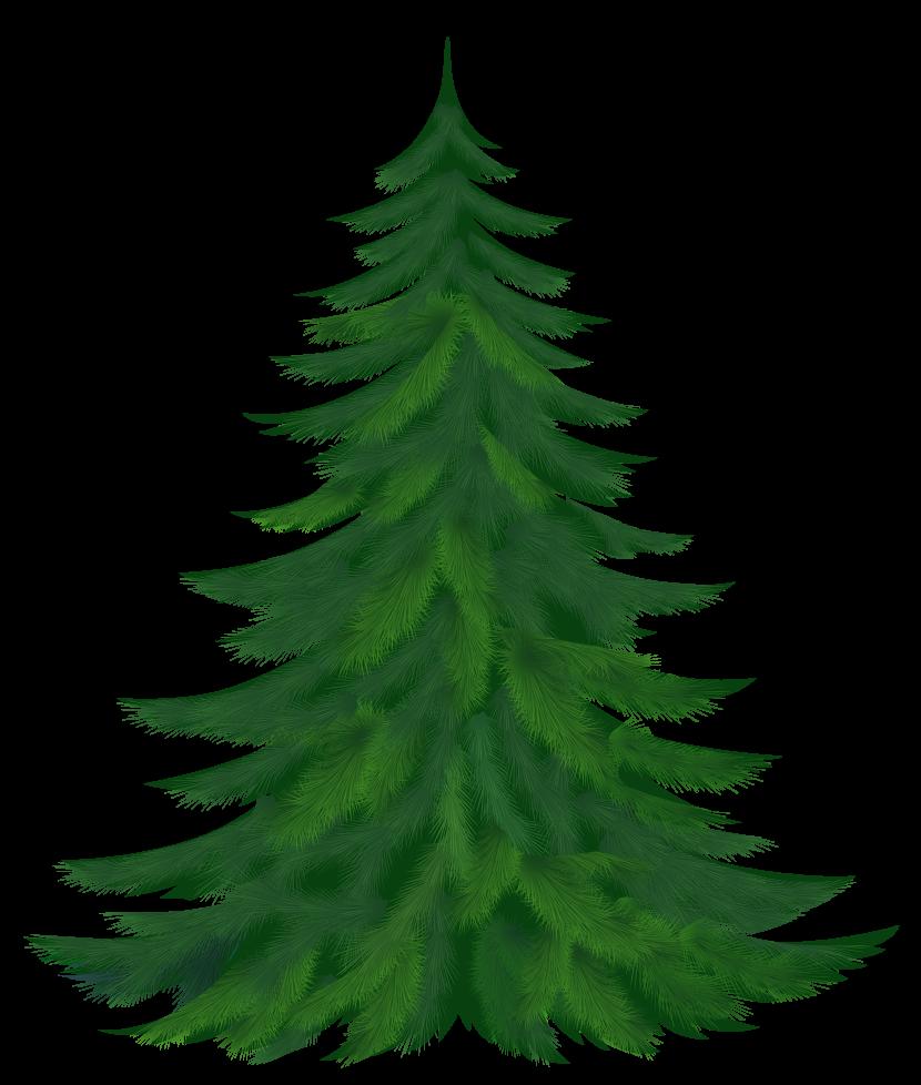 Pine Tree Clipart-Pine tree clipart-10