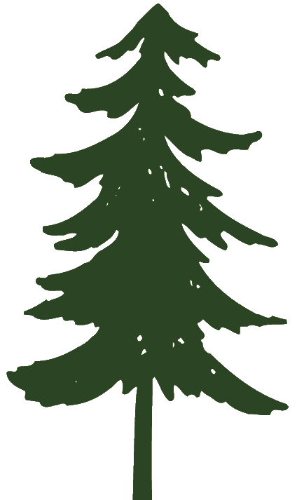 Pine Tree Graphic Free Cliparts That You-Pine Tree Graphic Free Cliparts That You Can Download To You-12