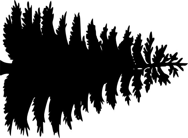 Pine Tree Outline | Large Pine Tree Clip-pine tree outline | Large Pine Tree clip art - vector clip art online, royalty-12