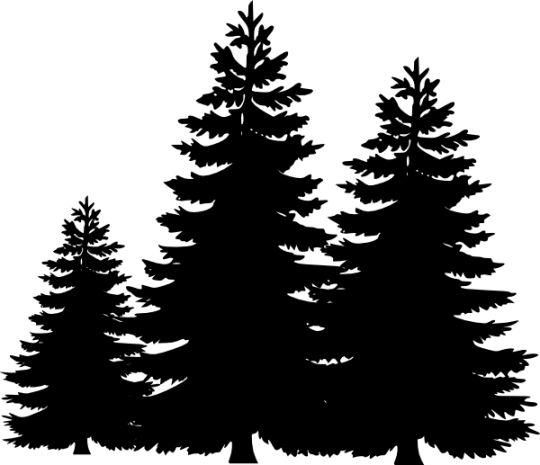 Pine Tree Silhouette Clip Art - Clip Art Pine Tree