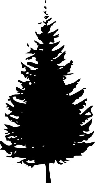 Pine Tree Silhouette | Tree Silhouette C-pine tree silhouette | Tree Silhouette clip art - vector clip art online, royalty free-12