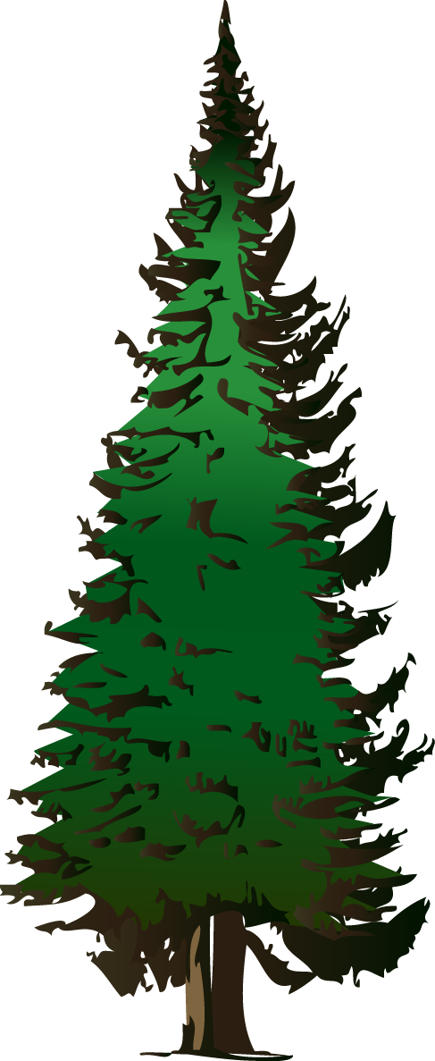 Pine Tree Vector Free Download