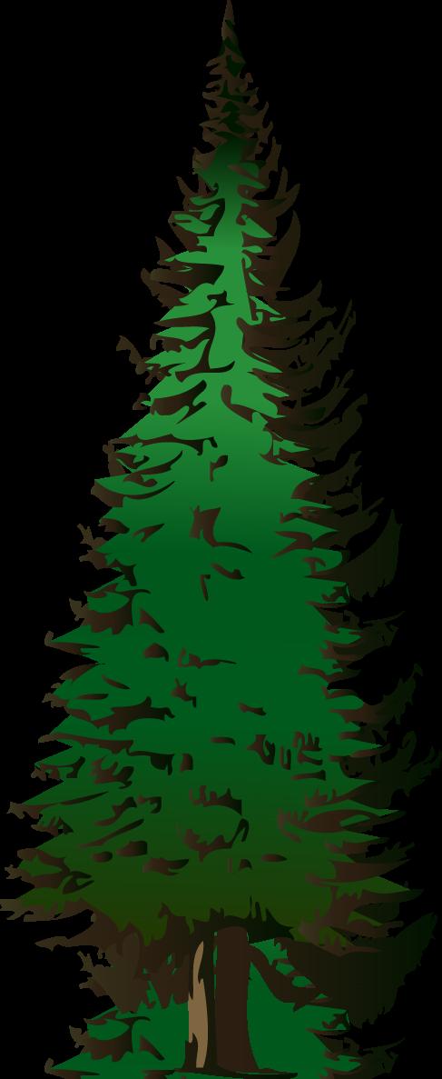 Pine Tree Vector Free Download-Pine Tree Vector Free Download-1