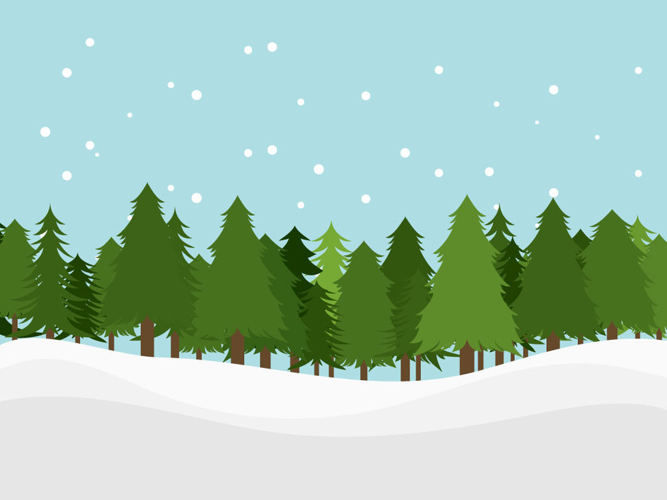 Pine Trees Snow Download This .