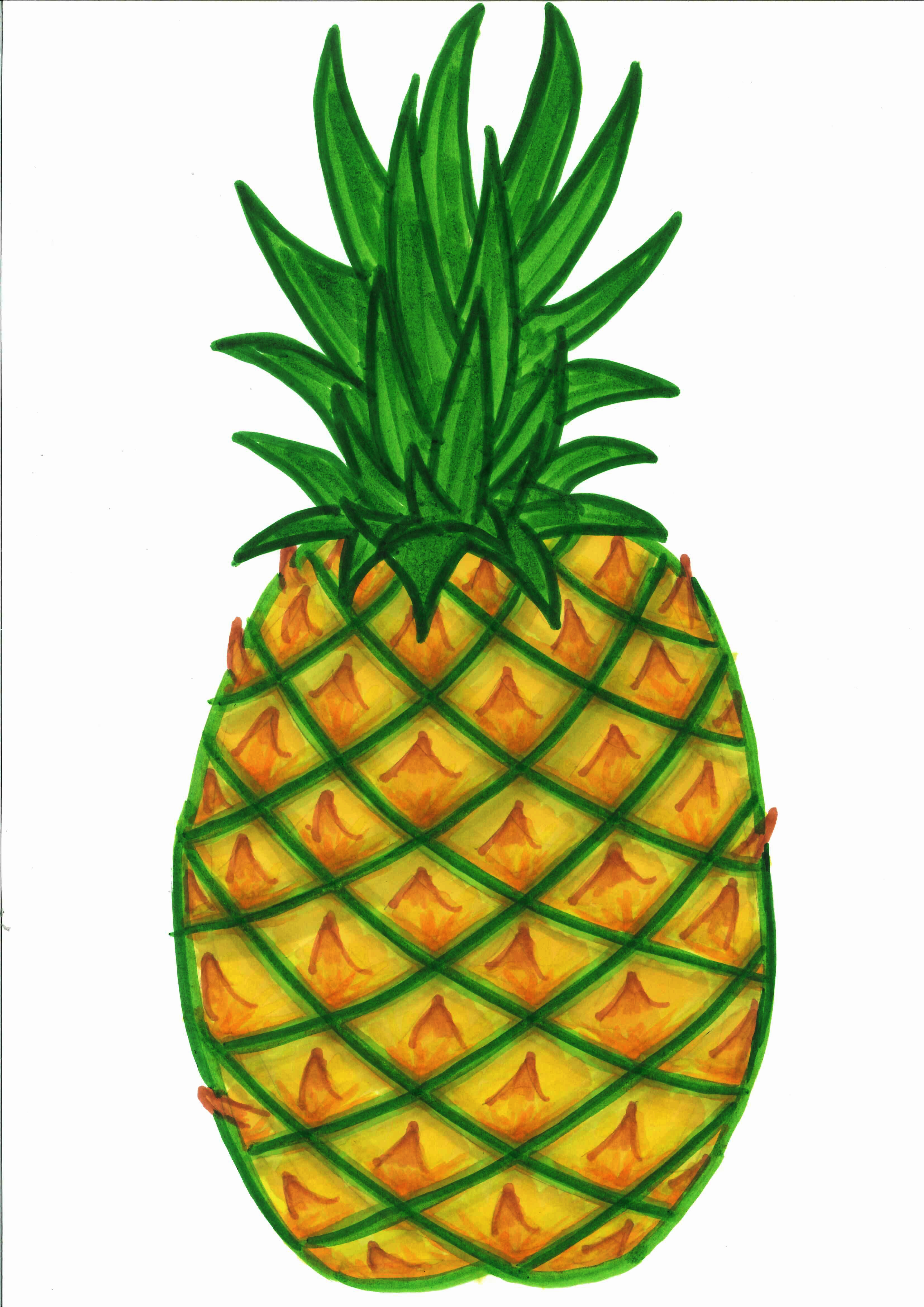 pineapple clipart black and white